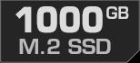 1000 GB M.2 SSD