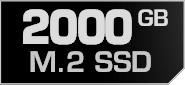 2000 GB M.2 SSD